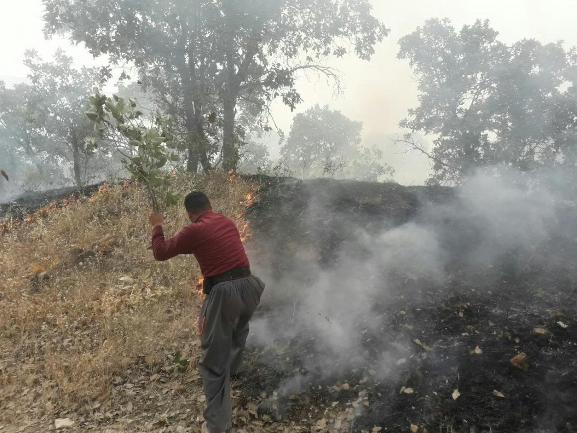 خبرنگاران سه نفر در اثر آتش سوزی مراتع پاوه جان باختند