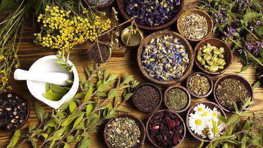 طراحی نرم افزار بانک اطلاعات گیاهی، امکان جستجوی موضوعی گیاهان خوراکی و دارویی